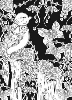 Welcome to Dover Publications Midnight Forest Bird Butterfly Abstract Doodle Zentangle Paisley Coloring pages colouring adult detailed advanced printable Kleuren voor volwassenen coloriage pour adulte anti-stress kleurplaat voor volwassenen Line Art Black and White