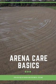 Pro Equine Grooms - Arena Care Basics