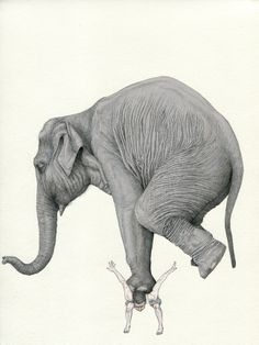 Fabien Merelle, Prix Canson 2010 - the paper manufacturer Canson's award for contemporary drawing Elephant Illustration, Illustration Art, Art Sketches, Art Drawings, Pencil Drawings, Art Du Croquis, Beaux Arts Paris, Canson, Drawn Art