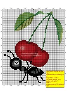 counted cross stitch kits for beginners Cross Stitch Fruit, Cute Cross Stitch, Counted Cross Stitch Kits, Cross Stitch Charts, Cross Stitch Patterns, Bordado Tipo Chicken Scratch, Plastic Canvas, Cross Stitching, Needlework
