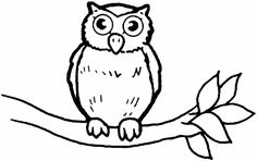 Luv owls: Owls Colouring Pages
