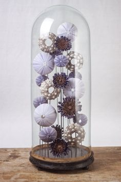 Purple shade sea shell composition under glass dome Seashell Display, Seashell Art, Seashell Crafts, Sea Crafts, Diy And Crafts, The Bell Jar, Bell Jars, Seashell Projects, Shell Decorations