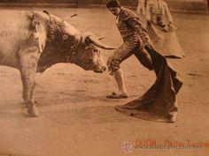 EXCELENTE TARJETA POSTAL DE P.P.S.XX ORIGINAL DE GIJON SERIE VINCK, TORO TOROS, C. 1910/15