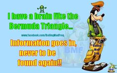 Bermuda Triangle, Note To Self, Wtf Funny, I Laughed, Funny Pictures, Jokes, How To Apply, Comics, Sayings