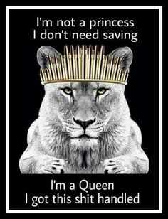 Your F**King Right there! I'm a Queen Bitch ♌! Leo Zodiac Facts, My Zodiac Sign, Amor Leo, Leo Quotes, Zodiac Quotes, Woman Quotes, Lioness Quotes, Leo Personality, All About Leo