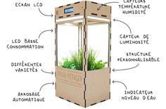 Un potager d'intérieur intelligent et connecté pour faire pousser ses plantes toute l'année