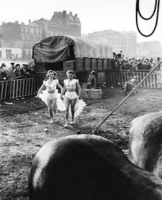 Le Zoo-Circus d'Achille Zavatta à Ivry-sur-Seine, 1949 by Willy Ronis