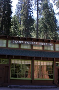 Giant Forest Museum in Fresno, California   tessadownsphotography2012