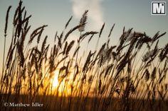 High plains, © Matthew Idler.