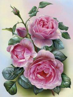 Roze rozen 35 x 25 cm