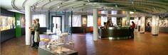 Museen in München: Infopoint Museen & Schlösser in Bayern