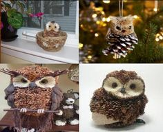 pinecone crafts | Recycle Reuse Renew Mother Earth Projects: How to make Pine Cone Owls