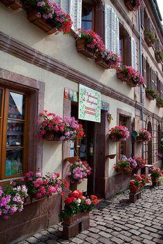 Bergheim, Alsace, France