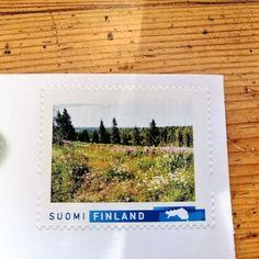 Sivakassa on kaunis Pohjorinteen niitty, josta teetettiin oma postimerkki. Polaroid Film