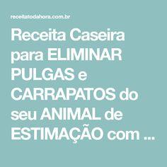 Receita Caseira para ELIMINAR PULGAS e CARRAPATOS do seu ANIMAL de ESTIMAÇÃO com BICARBONATO de SÓDIO