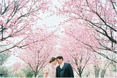 The Bride-to-Be and her Groom in Cherry Blossom heaven --- Beautiful!