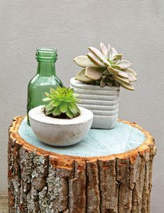Make pots for your plants