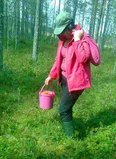 Nyt Eliina Mäntyjärvi siirtyy mustikkahommiin.