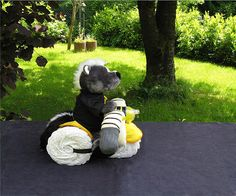 Little Wonders Windeltorten: ROCKY - Trike