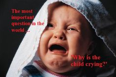 "Society needs to know ""Why is the child crying.""   Another Alice Walker quote."