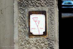Divlja trava #BeogradskiGrafiti #StreetArt #Graffiti #Beograd #Belgrade #Grafiti