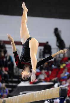 Kentucky Georgia Gymnastics by Kelly M. Lambert, via Flickr  college gymnast