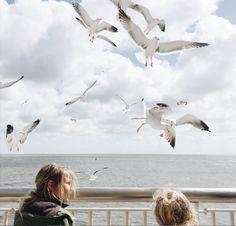 De leukste tips voor op Texel met kids.