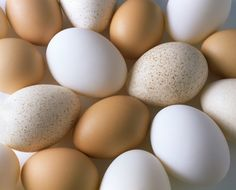 Cracking the Code on Cooking Eggs - what is the healthy way to cook eggs