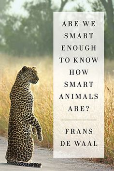 SCIENCE & TECHNOLOGY: Are We Smart Enough to Know How Smart Animals Are? by Frans de Waal | The Best Books Of 2016, According To Goodreads Users