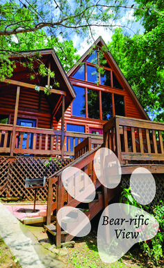 1000 images about pet friendly cabins on pinterest for Big bear cabins pet friendly