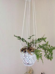 Van een gehaakt kleedje kan je ook een plantenhanger maken.