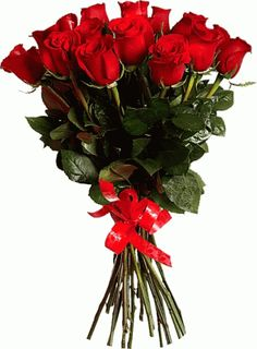 The perfect Red Roses Bouquet Animated GIF for your conversation. Roses Gif, Flowers Gif, Love Flowers, Good Morning Roses, Good Morning Gif, Red Rose Bouquet, Beautiful Red Roses, Animated Gif, Animation