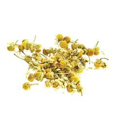 Chamomile – An Age Old Medicinal Wonder With Countless Health Benefits | VeggiesInfo For More Info: http://veggiesinfo.com/chamomile-health-benefits/