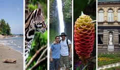 Costa Rica has something for everyone, from extreme sports, to hiking and bird watching, to surfing or just relaxing on one of its many beautiful beaches.