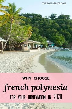 Why you should choose to spend your honeymoon in French Polynesia in 2020 - the best honeymoon ideas to enjoy a vacation in islands like Tahiti, Bora Bora, Moorea, and other French Polynesian islands #traveldream #beautifulvacations #traveltogether Top Places To Travel, Cool Places To Visit, Best Honeymoon, Honeymoon Ideas, Bora Bora, Tahiti, Beautiful Islands, Beautiful Beaches, Cheap Tropical Vacations