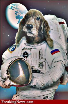 dog astronaut tattoo - photo #31