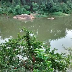 A terceira margem do rio...