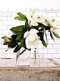 magnolia centerpieces