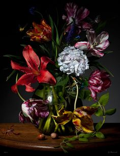 Beautiful floral still life by Dutch photographer Bas Meeuws, captured with a digital reflex camera. So Century Dutch Masters. Dutch Still Life, Still Life Art, Still Life Images, Still Life Flowers, Painting Still Life, Flower Pictures, Still Life Photography, Botanical Art, Flower Art