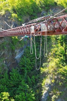Done > A.J. Hackett bungee jumping, Queensland, New Zealand  I'll just watch!