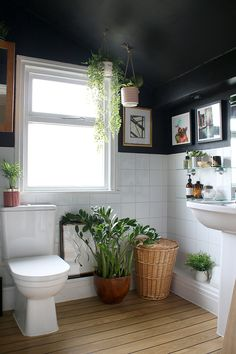 Revamp your plain bathroom by painting the walls black and adding plenty of houseplants! Gorgeous image from @swoonworthyblog. . #wholesaledomestic #bathrooms #bathroomidea #bathroomdecor #bathroomdecorating #bathroominterior #bathroomdecor2019 #dreambathrooms #bathroomrenovations #bathroomdecorideas #bathroomdesign #bathroominspiration
