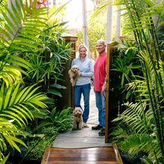 Leafy Plants - Tropical Plants Retreat - Sunset Mobile.com
