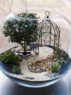 Miniature Garden Terrarium #fairiesgarden