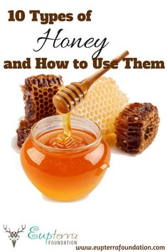 Why are there different types of honey in jars out there? What makes honey creamed vs raw vs manuka, etc. We explore 10 types of honey and how to use them. Manuka Honey, Raw Honey, Honey Uses, Types Of Honey, Creamed Honey, Mead, Beekeeping, How To Increase Energy, Kitchen Pantry