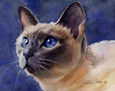 Traditional Applehead Siamese cat art Print of my door rachelsstudio