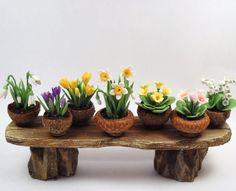 acorn cap flower pots at cdhm