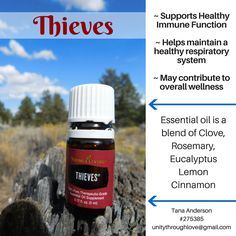 Young Living Eucalyptus, Yl Essential Oils, Respiratory System, Benefit, Wellness, Pure Products, Fall, Autumn
