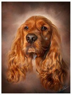 New Dogs Drawing Abstract Ideas Cocker Spaniel, Animal Paintings, Animal Drawings, Animals And Pets, Cute Animals, Dog Wallpaper, Irish Setter, Wildlife Art, Dog Portraits