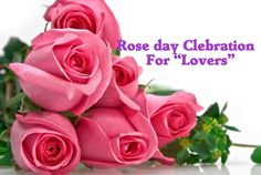 Happy Rose Day 2016 Images Wallpaper Special Pics shayari free download rose day quotes, sms, greetings,   wishes, messages in Hindi English.