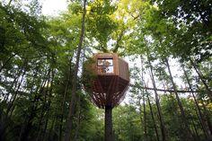 Gallery of ORIGIN Tree House / Atelier LAVIT - 6